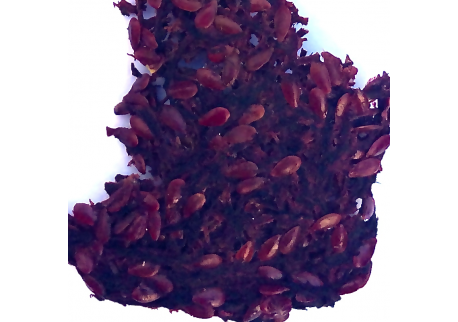 BEET JERKY NATURAL 50g